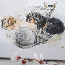 Load image into Gallery viewer, Ink and Colour Pencil Pet Portrait