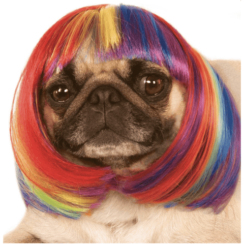 Rainbow Bob Wig Pet Costume
