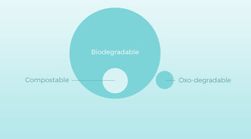 Biodegradable Sanitary Pads: Everything You Need To Know