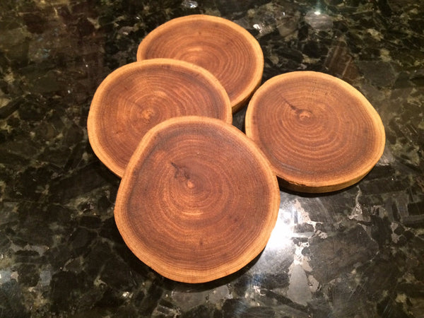 4 Rustic Elm Coasters, set of Four Coasters, Wedding Gift, Wood Slice Coaster