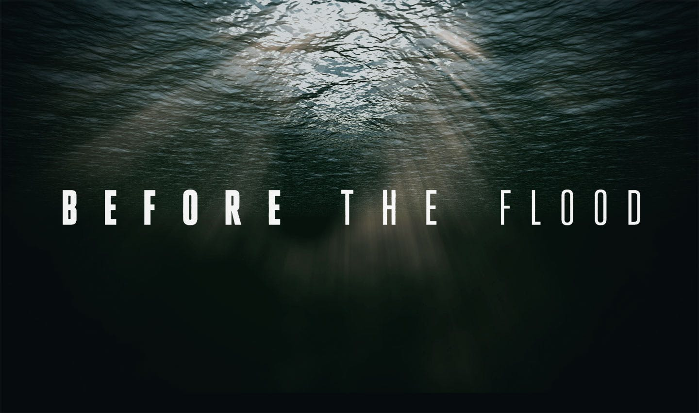 Before the Flood Movieposter