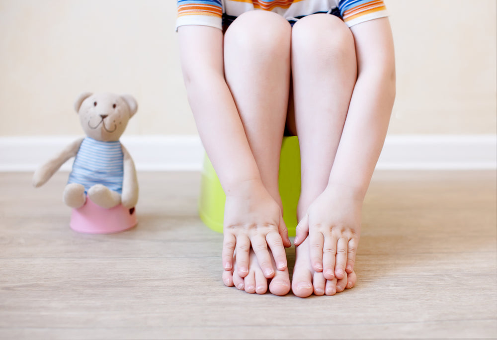 guide to toilet training toddlers