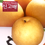 Load image into Gallery viewer, Singo Pears