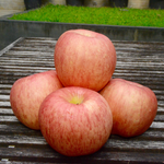 Load image into Gallery viewer, Fuji Apples