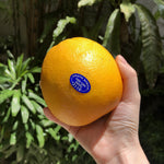 Load image into Gallery viewer, Cara Cara Oranges