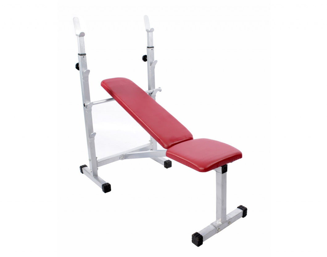 LifeLine Fitness Multi Purpose Bench - 307