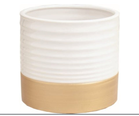 "6"" White + Gold Pot"