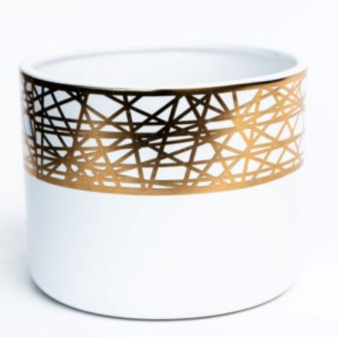 "6"" White + Gold Detail Pot"