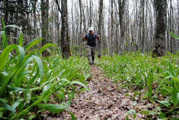 Hiking down the trail while fast packing in Pictured Rocks National Lakeshore
