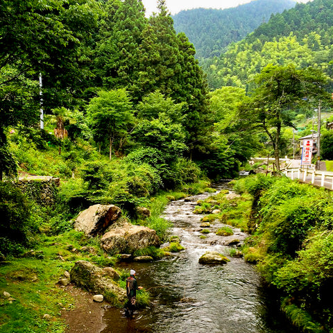 Fly Fishing the Youzawa trout stream in Japan