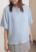 Lantern Sleeves Top