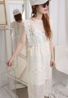 Semi Mesh Embroidered Dress