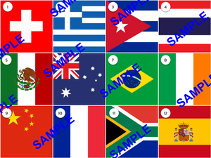 Flags Picture Round