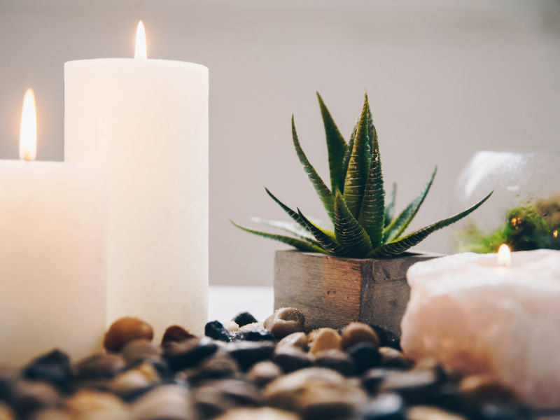 A succulent plant, with some small river rocks around it and three candles, creating a very relaxing image