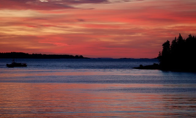 Predawn Waterscape, Owl's Head, Maine