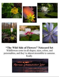 Wildflower Notecard Set