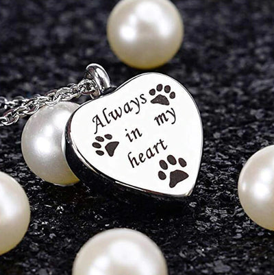 Always In My Heart Pet Dog Paw Memorial Necklace