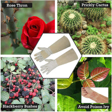 Load image into Gallery viewer, HANDLANDY Rose Pruning Gloves for Men & Women, Long Thorn Proof Gardening Gloves, Breathable Pigskin Leather Gauntlet , Best Garden Gifts & Tools for Gardener