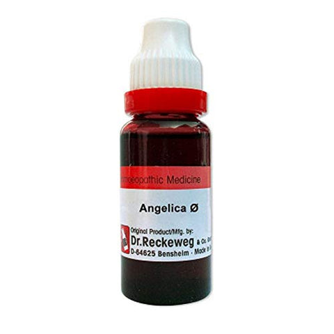 Dr. Reckeweg Germany Homeopathy Angelica Archangelica Mother Tincture Q (20 ML) by Qualityexport