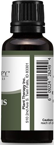 Plant Therapy Eucalyptus Globulus Essential Oil 30 mL (1 oz) 100% Pure, Undiluted, Therapeutic Grade