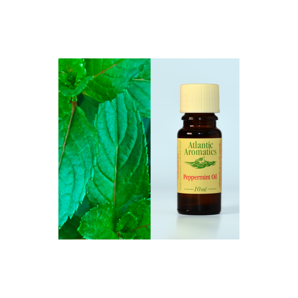 Peppermint organic Essential Oil 10ml