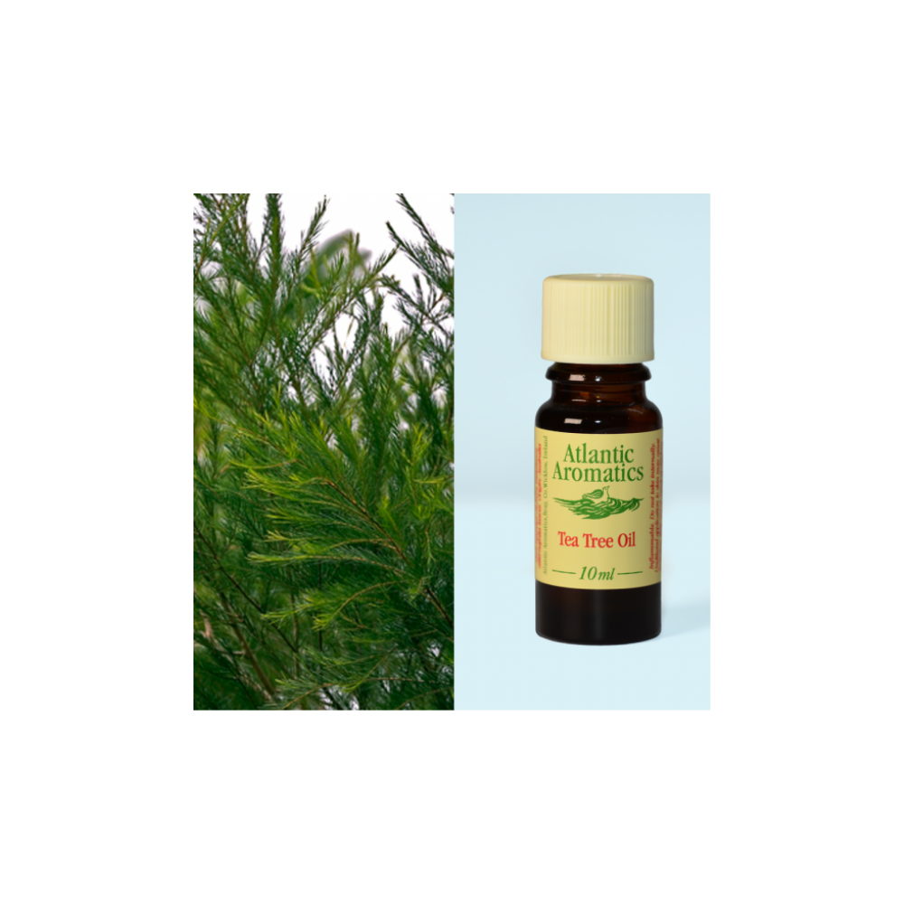 Atlantic Aromatics Tea Tree organic Essential Oil 10ml