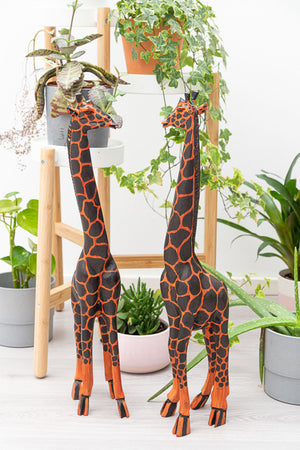 Large African Giraffe - Cameroon - Pendza