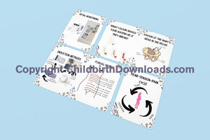 6 X Handout Leaflets For Birth Prep Prenatal/ Antenatal Classes Digital File