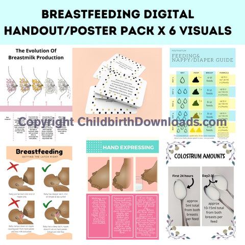 Breastfeeding Educational Digital Poster/hand Out Pack Digital File