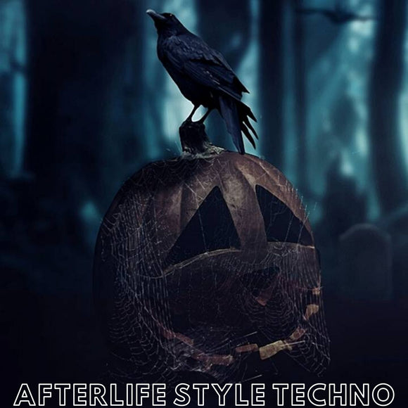 Afterlife Style Techno / Ableton Live Template