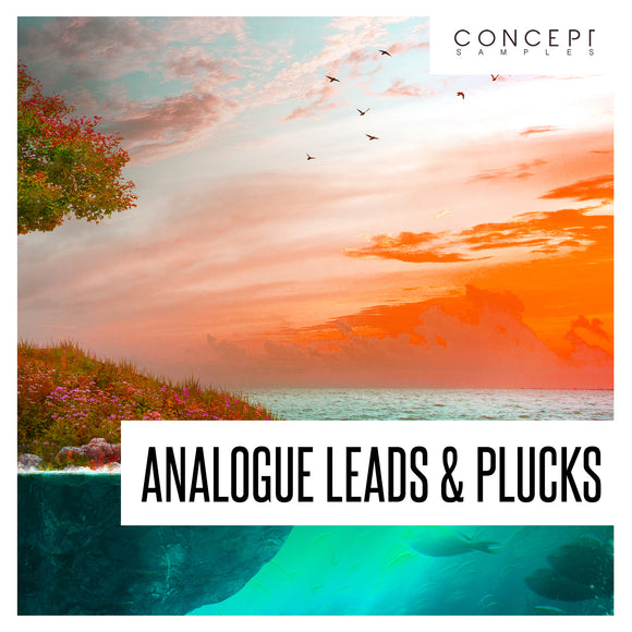 Analogue Leads & Plucks Sample Pack