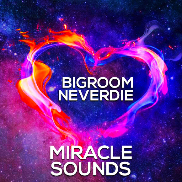 Bigroom Never Die