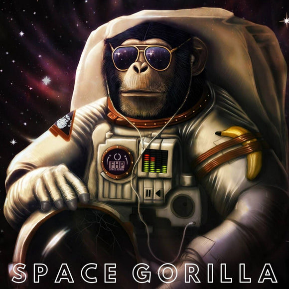 Space Gorilla / Spektre Style Techno FL Studio Template
