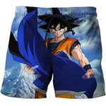 Short de Bain Dragon Ball <br/> Tenue de Combat