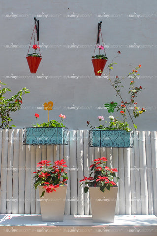 English Balcony Garden with plants (Bangalore only)