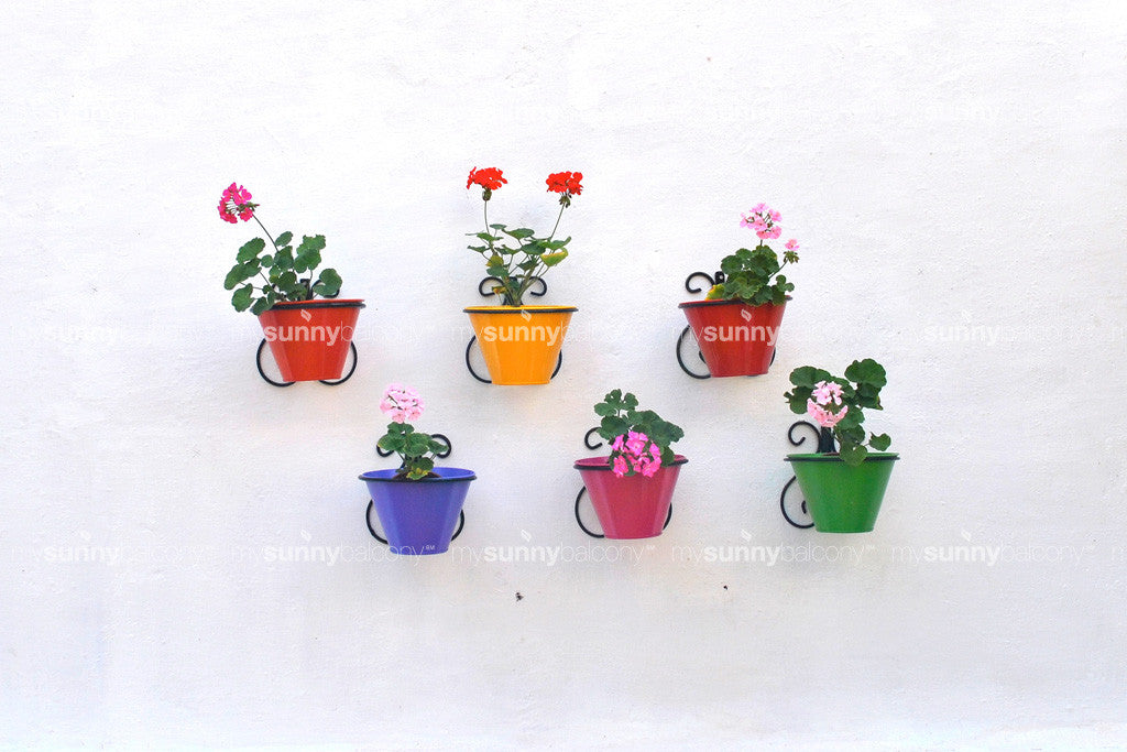 Wrought Iron Wall Mounted Bracket with Metal Pot - Set of Six