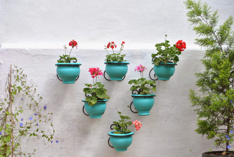 Terracotta Hanging Pot with Wall Bracket (Bangalore Only)