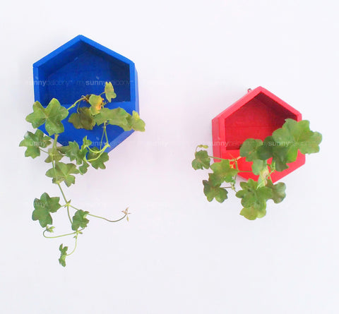 Hexagonal Wall Planters (Set of Two)