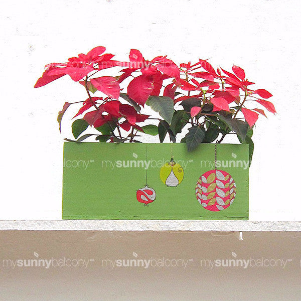 Wooden Window Box (Double) with Ornament Motif