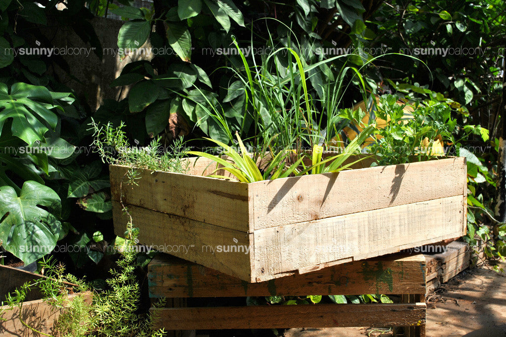 Recycled wood Square-foot garden planter