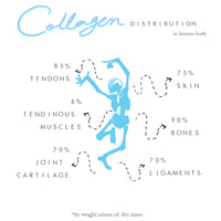 Why collagen should be consumed by everyone.