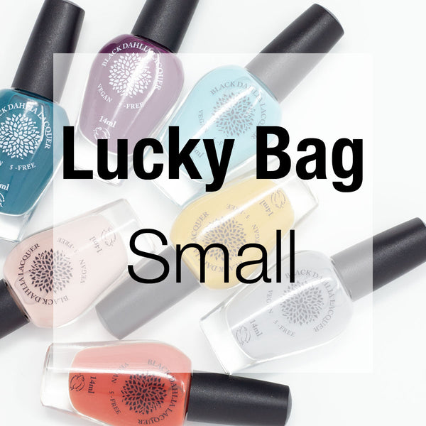 Small Lucky Bag
