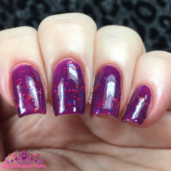 Purple China Aster - Black Dahlia Lacquer