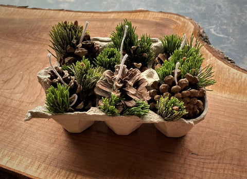 crafts with kids for the summer. forage for pine needles and pine cones. beeswax firestarter