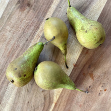 Load image into Gallery viewer, 4 conference pears on a wooden board