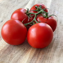 Load image into Gallery viewer, Tomatoes Vine