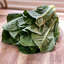 Load image into Gallery viewer, close up of green cos lettuce on a board