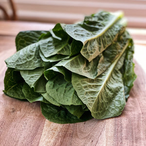 close up of green cos lettuce on a board