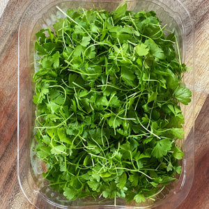 micro celery leaf in a plastic punnet on a wooden board