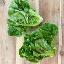 Load image into Gallery viewer, 2 little gem lettuces on a wooden board